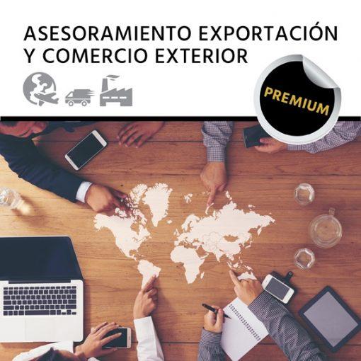 Exportar productos de un modo profesional: Asesoramiento Especializado Exportación y Comercio Exterior