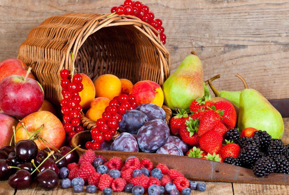 7 consejos para exportar tus frutas a Europa