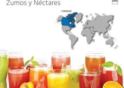 EXPORTAR zumos_y_nectares_canada_5 consejos clave
