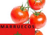 Países a los que exporta tomates Marruecos - Export Tomato